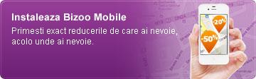 bizoo mobile